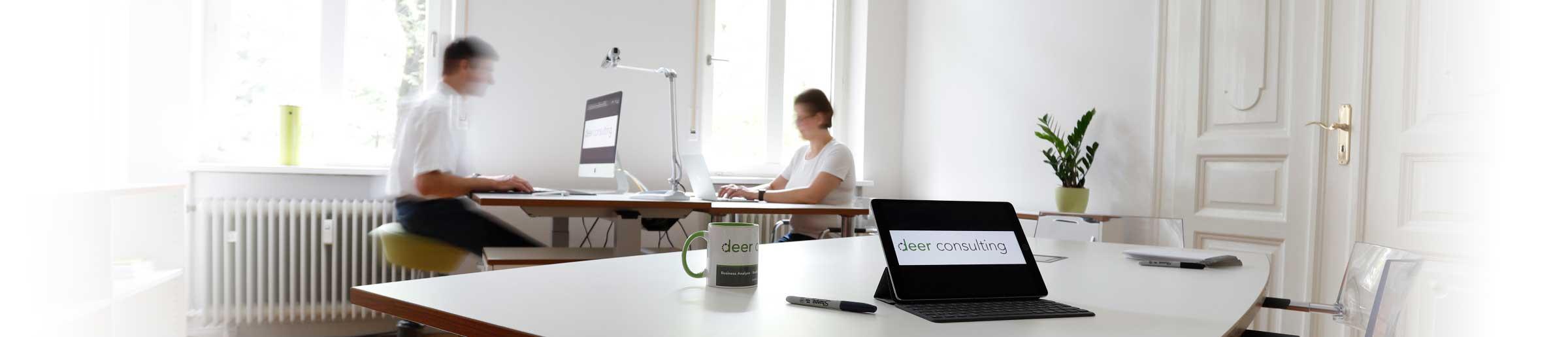 deer consulting GmbH, Fürth, Business Analyse, Usability Engineering, Web und Social Media